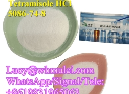 Tetramisole HCl Powder 5086-74-8 Antiparasitic drug Tetramisole HCl China Reliable Supplier